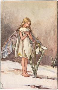 Illustration for the Snowdrop Fairy for Flower Fairies of the Winter. A girl stands in the snow in front of a snowdrop, with her arms folded across her chest. 300.4.1 FF Winter 1 1923